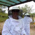 Die Bienen und der Honig - Bee careful! 8