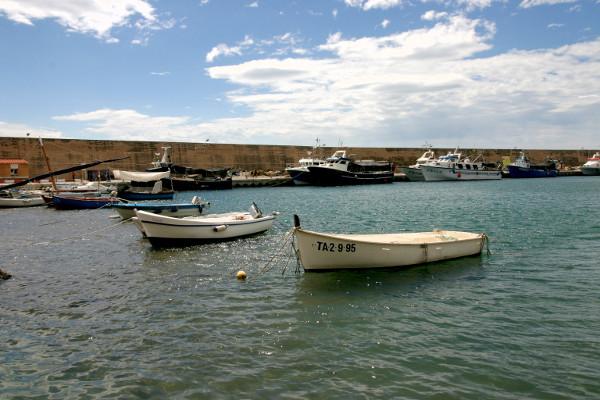 boote Thunfisch Tour freibeuter reisen