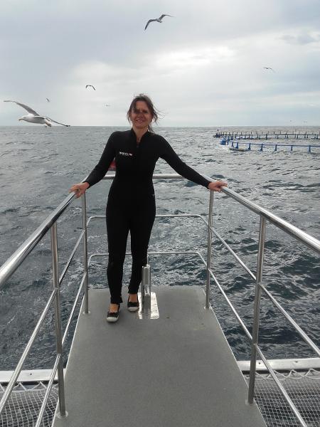 thunfisch schwimmen freibeuter reisen kurz vorher handy