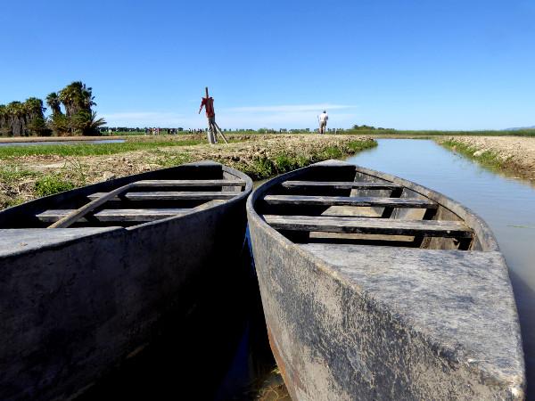 traditionelle boote barcas de perchar Reis im Ebrodelta freibeuter reisen