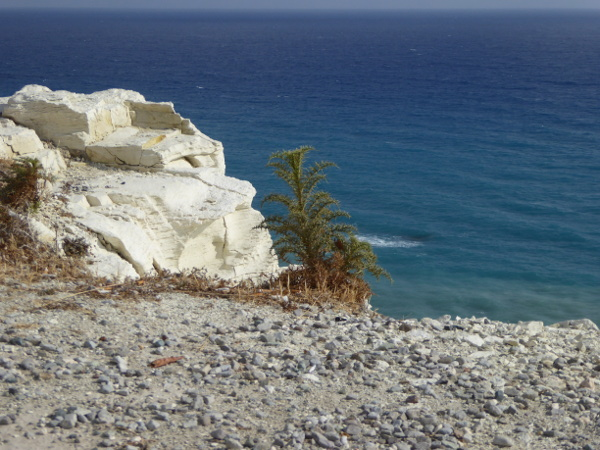wo ist Aphroditefelsen Zypern Petra tou Romiou