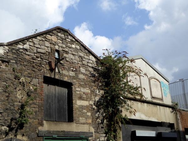 Dublin Hafen old houses Freibeuter Reisen