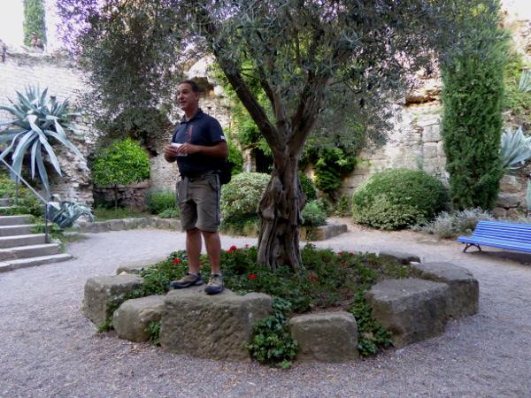 Kapern, Myrte, Mastix - was wächst da in Girona? 7