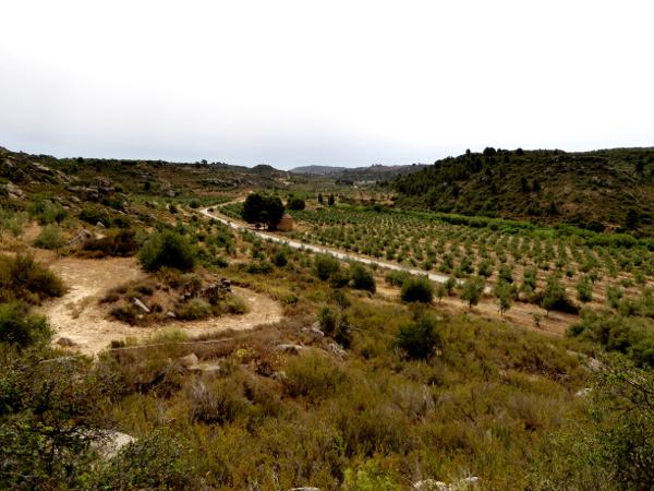 Landschaaft Les garrigues Nekropole visigodos el cogul gräber Freibeuter Reisen Lleida.