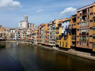Kapern, Myrte, Mastix - was wächst da in Girona? 2