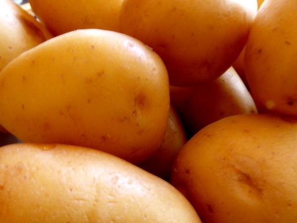 kartoffeln Irland