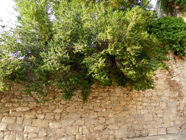 myrte Girona Freibeuter reisen