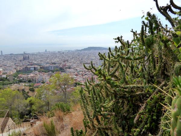bunkers-carmel-barcelona-kaktus-freibeuter-reisen