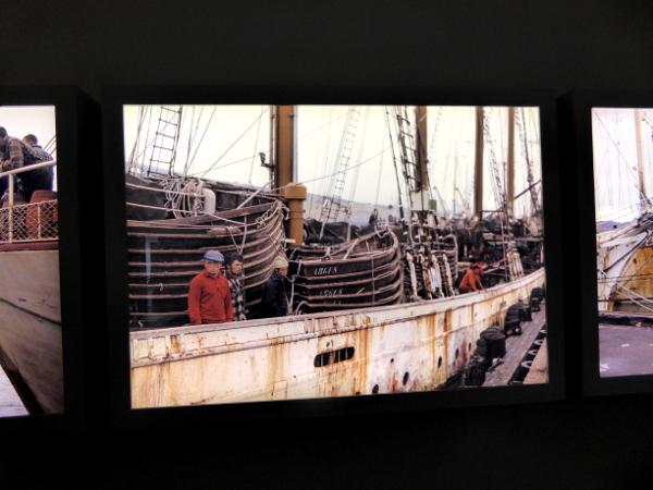 ausstellung-kabeljau-fischer-museum-freibeuter-reisen