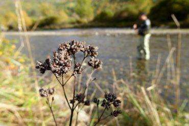 Fliegenfischen in den Pyrenäen 6