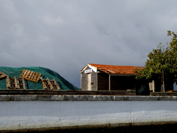 kanal-da-aveiro-freibeuter-reisen