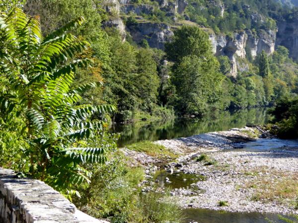 les-gorges-du-tarn-lozere-freibeuter-reisen