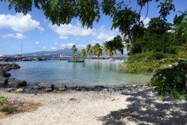 Traumhafte Strände auf Martinique: Unter Palmen 9