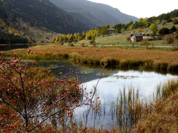 huette-am-see-nationalpark-aigueestortes-freibeuter-reisen