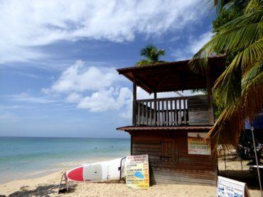 Traumhafte Strände auf Martinique: Unter Palmen 12