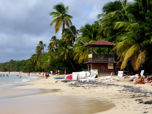strände-plage-les-salines-strand-martinique-freibeuter-reisen