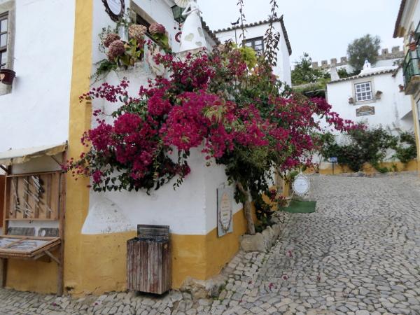 obidos-portugal-freibeuter-reisen-blumen-rot-lila