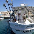 Was machen auf Zypern? Ausflug mit dem Boot oder per Rad 15