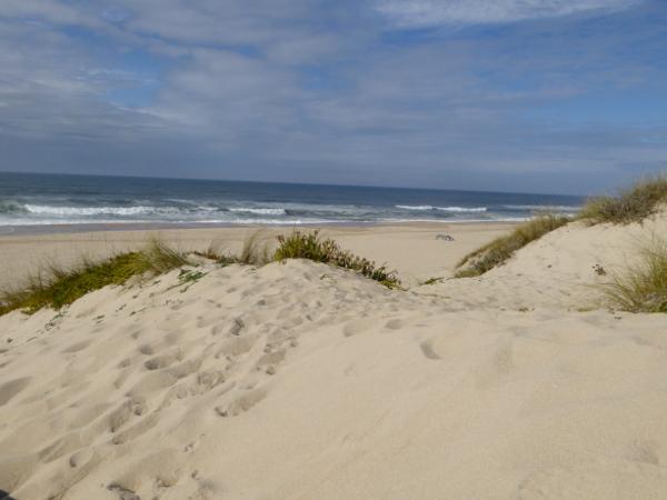 strand-fischerhuetten-praia-da-tocha-freibeuter-reisen