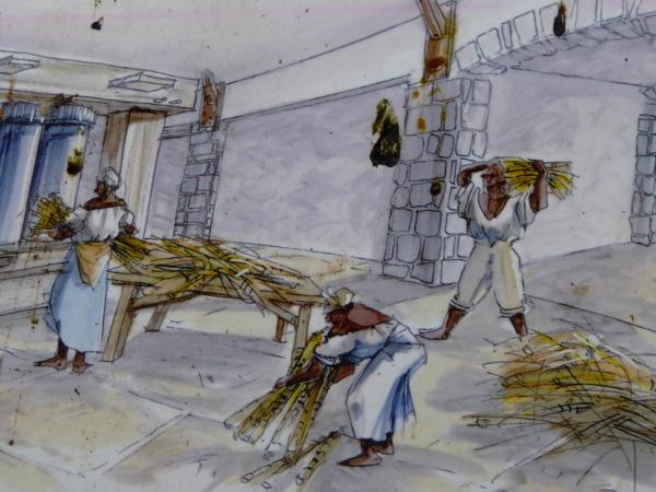zuckerrohr-verarbeitung-moulin-martinique-freibeuter-reisen