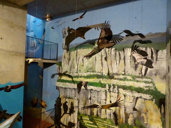 besucherzentrum-maison-vautours-geier-lozere-freibeuter-reisen