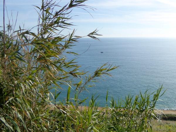blick-aufs-meer arenys de mar freibeuter-reisen
