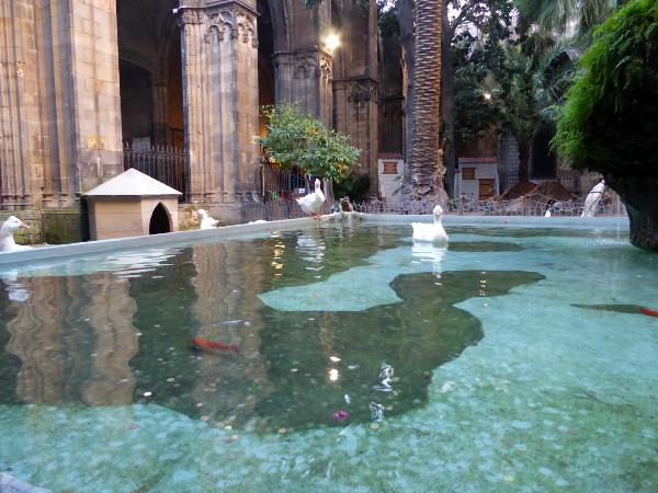claustro-kreuzgang-kathedrale-barcelona-gaense-freibeuter-reisen