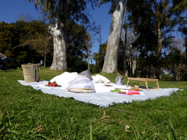 Picknick im Park Barcelona Freibeuter reisen