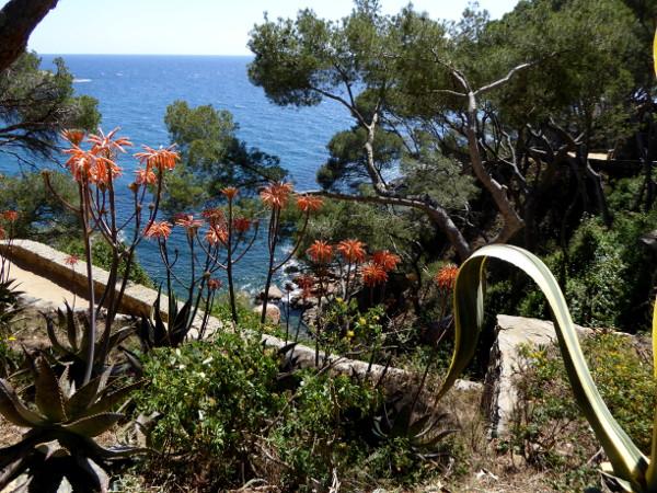 Cami de Ronda beim Restaurant Casamar llafranc Costa Brava Freibeuter reisen