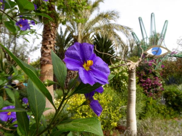 anima garden lila bluem andre heller freibeuter reisen