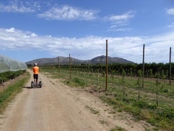 Segway Obstplantagen montgri freibeuter reisen costa brava