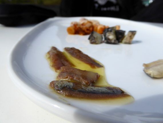 anchovis escala fertig zum essen anxovis freibeuter reisen