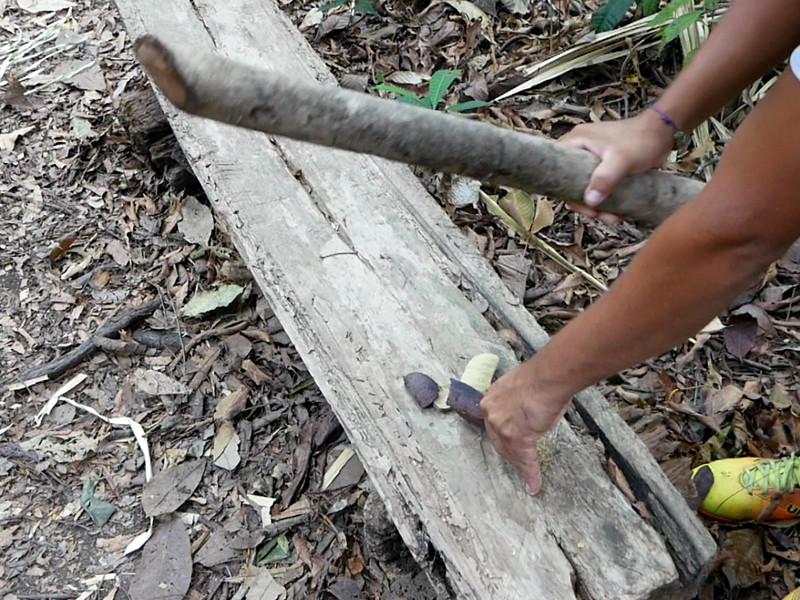 frucht aus dem Amazonas regenwald freibeuter r