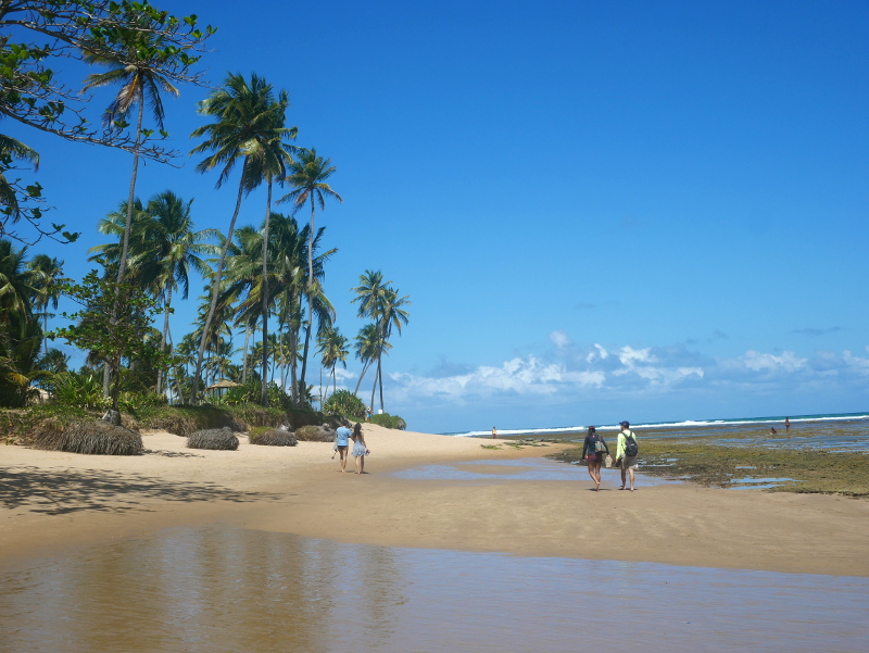 strand in praia do forte