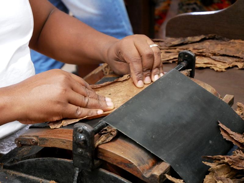 tabak rollen dannemann zigarren brasilien bahia freibeuter reisen