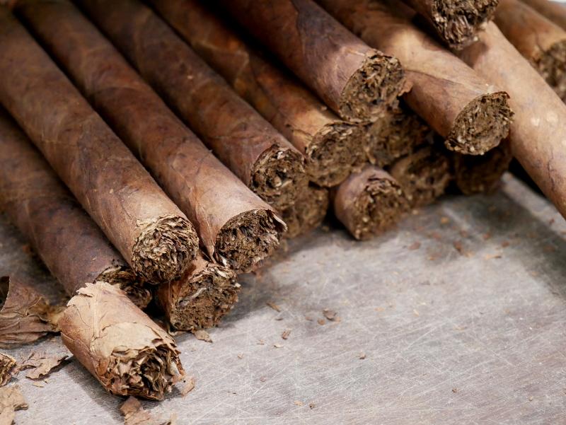 zigarren tabak dannemann brasilien freibeuter reisen