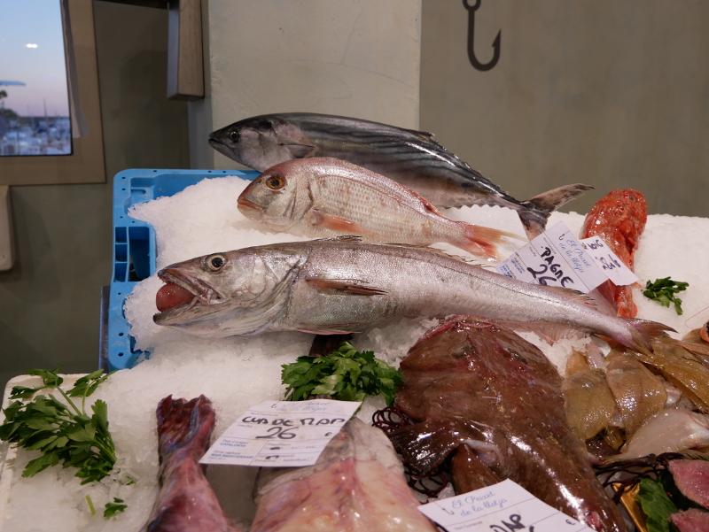 palamos schiffe hafen fischmarkt
