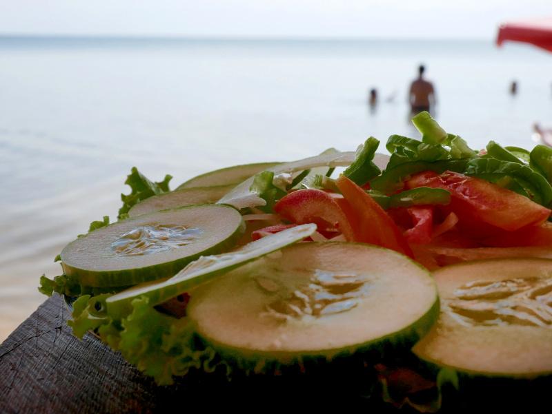 pindobal salat amazonas