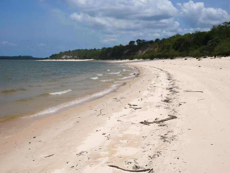 unberuerhrte natur strand amazonas