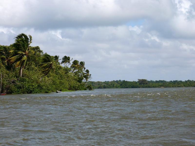 Paracauari fluss Furo do Miguelão Brasilien Amazonas
