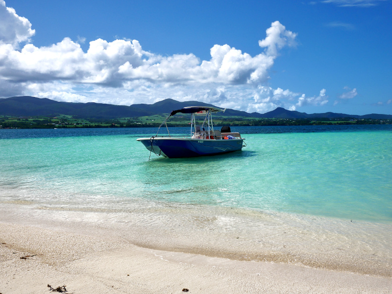 Guadeloupe boot ausflug mangroven saint rose