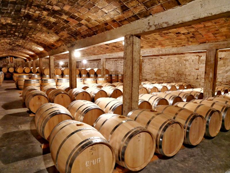 Weinkeller fass Castell del Remei Lleida