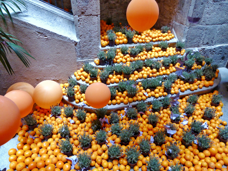 orange Temps de Flors – Girona