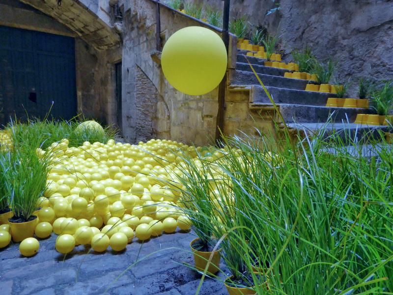 Temps de Flors – Girona zitronen