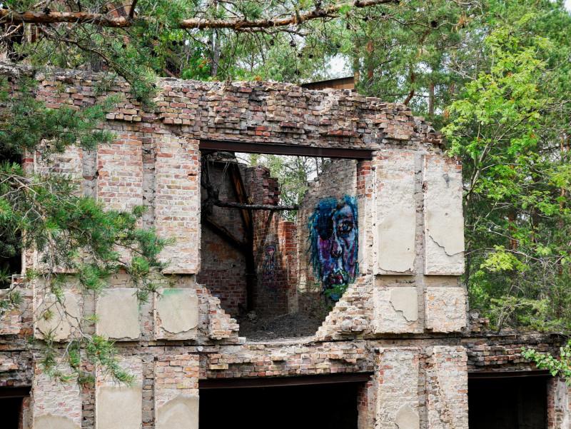 blaues bild grafitti alpenhaus beelitz heilstaetten baumkronenpfad