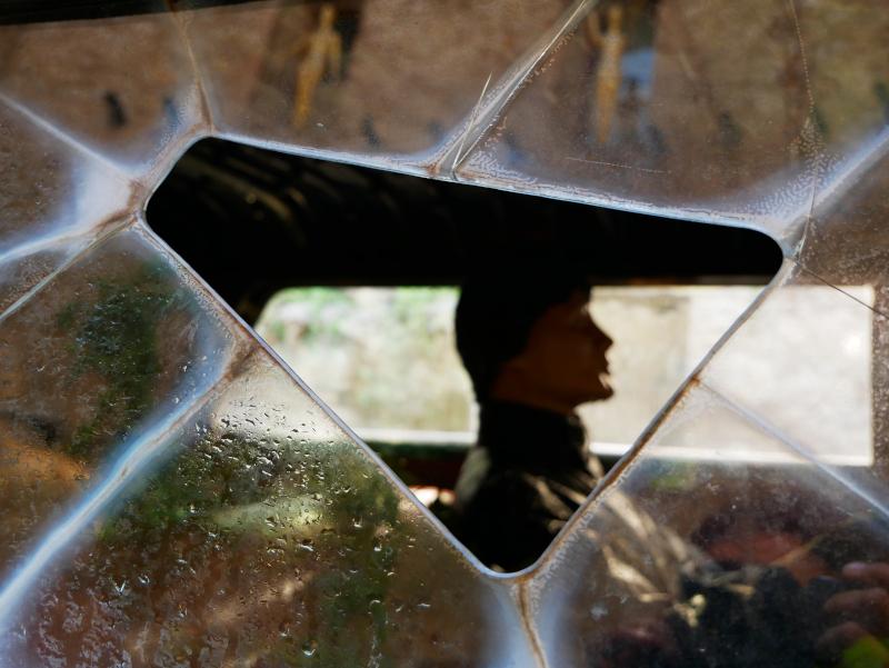 rainy taxi salvador dali figueres museum Dalí