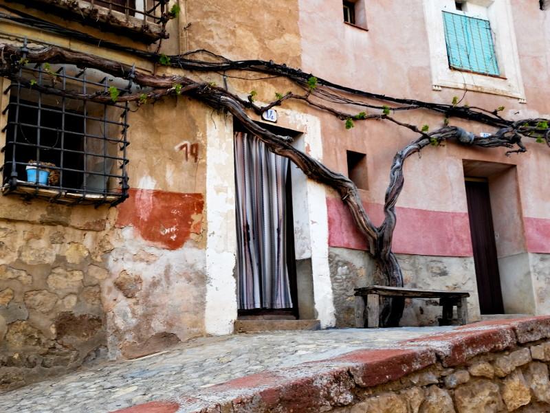 albarracín baumstamm wie vorhang