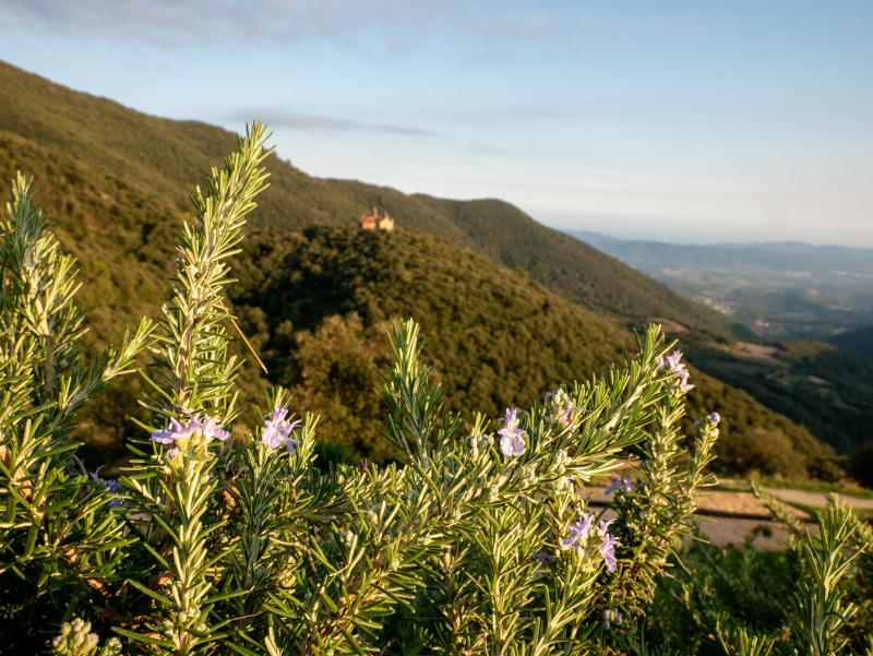 blick auf die ermita vom hotel can cuch montseny katalonien