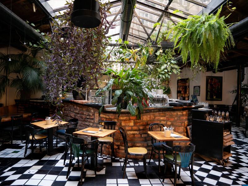 cafe im kunst haus Wien Hundertwasser