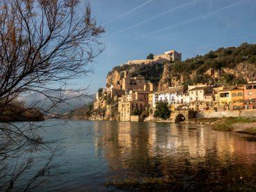 Miravet Ebro Ufer Baum
